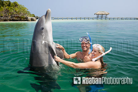 Happy couple playing with dolphin in caribbean sea