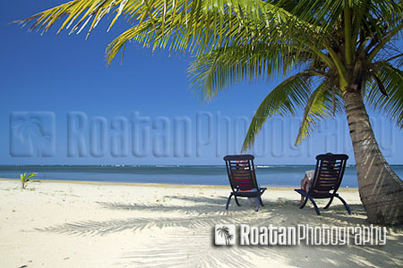 Relaxing under palm tree on remote white sand beach stock photo
